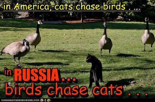 in RUSSIA . .