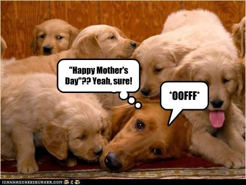 """""""Happy Mother's Day""""?? Yeah, sure!"""