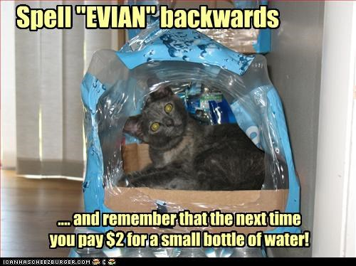 Spell EVIAN backwards