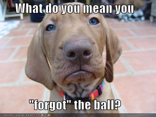 "What do you mean you  ""forgot"" the ball?"