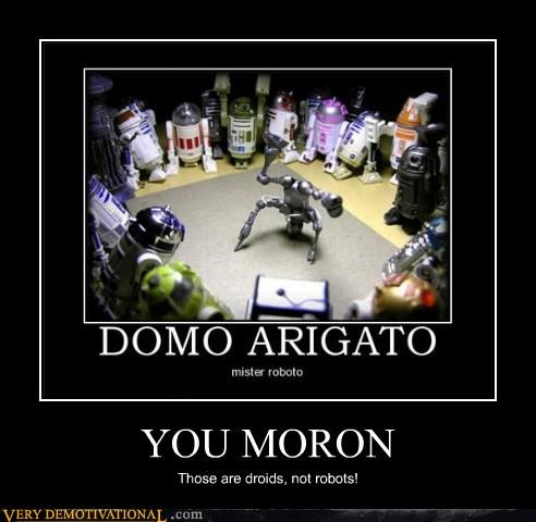 YOU MORON