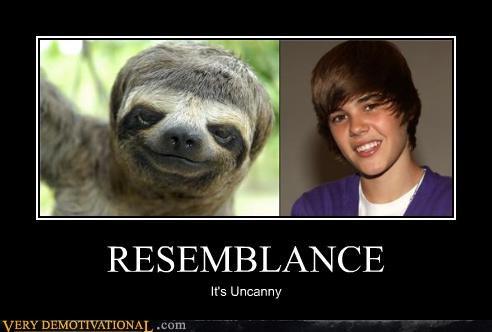 justin bieber,resemblance,sloth
