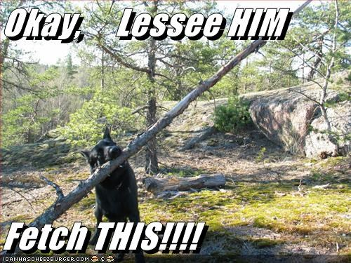 Okay,     Lessee HIM  Fetch THIS!!!!