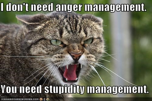 I don't need anger management.  You need stupidity management.