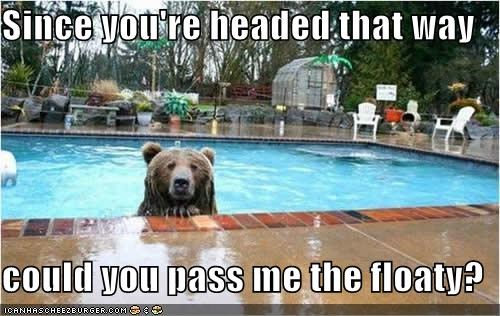 asking,bear,caption,captioned,floaty,headed,pass,pool,question,request,swimming,that way