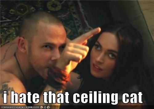 i hate that ceiling cat