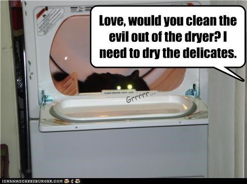 Love, would you clean the evil out of the dryer? I need to dry the delicates.