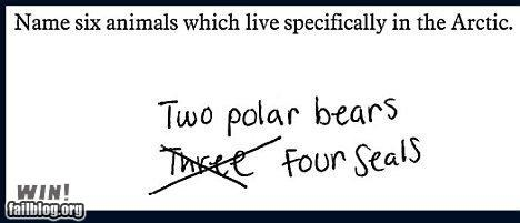 Test Answer WIN
