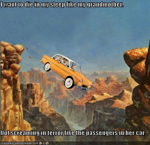 I want to die in my sleep like my grandmother.  Not screaming in terror like the passengers in her car.