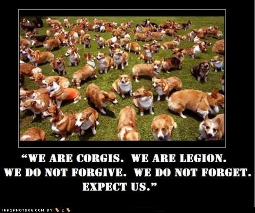 Million Corgi March
