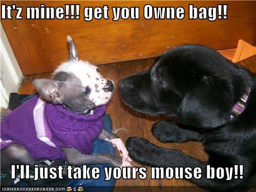 It'z mine!!! get you Owne bag!!  I'll just take yours mouse boy!!