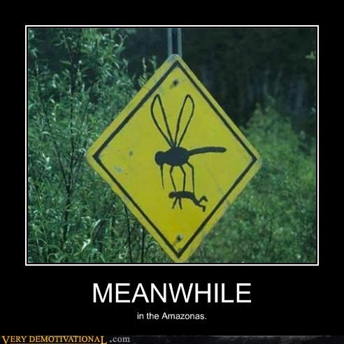 huge,mosquito,scary,sign