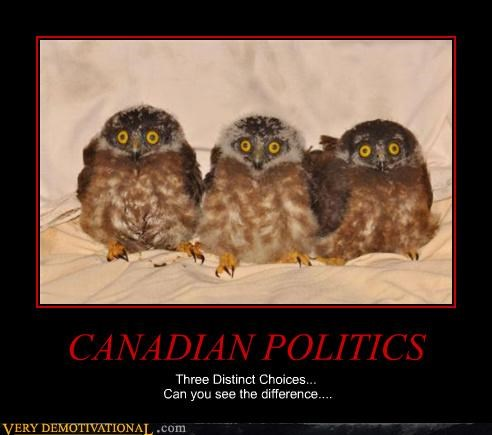 CANADIAN POLITICS