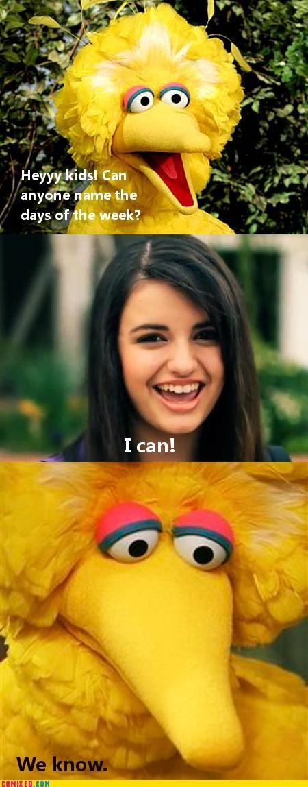 big bird,Rebecca Black,Sesame Street