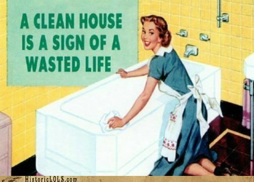 A Clean House Is A Sign Of A Wasted Life
