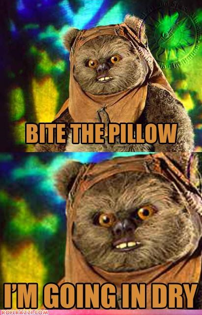 Ewoks Are Terrible Lovers...
