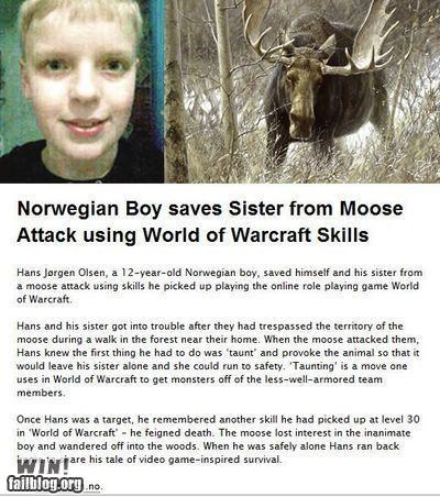 completely relevant news,moose attack,news,skills,video games,world of warcraft