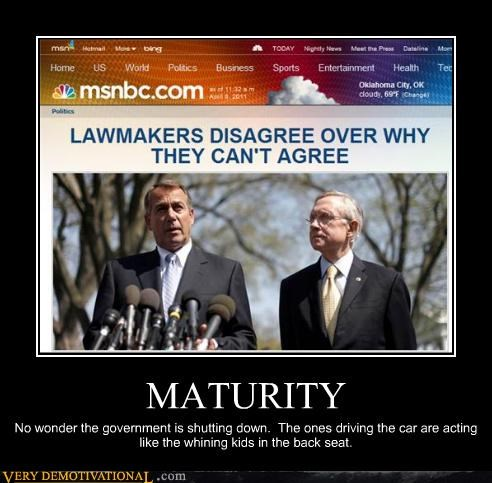 disagree,government,idiots,maturity
