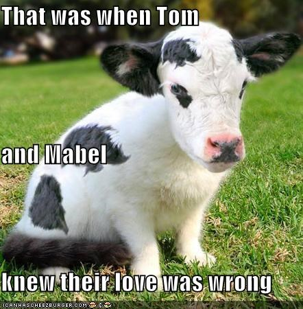 That was when Tom and Mabel knew their love was wrong