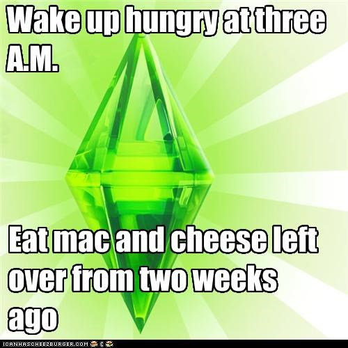Wake up hungry at three A.M.