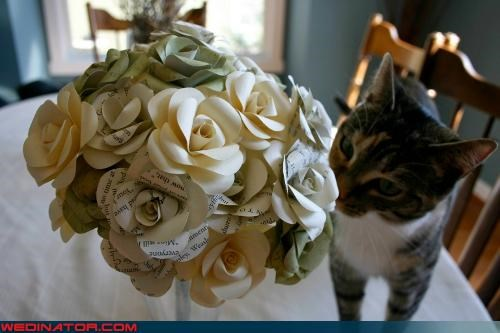 crazy wedding bouquet,funny wedding photos,Harry Potter
