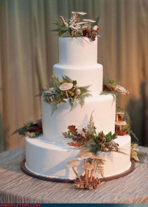 funny wedding photos,mushroom cake,wedding cake