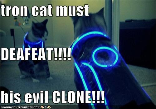 tron cat must DEAFEAT!!!! his evil CLONE!!!