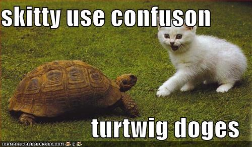 skitty use confuson  turtwig doges