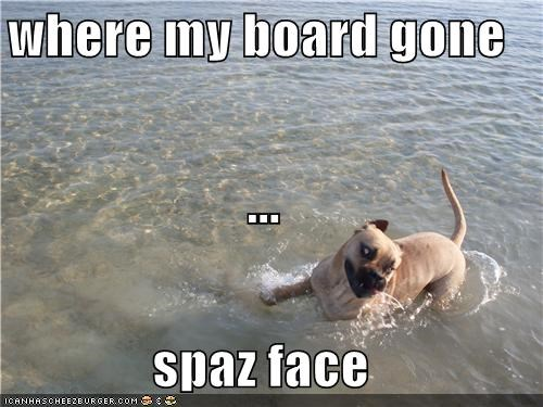 where my board gone ... spaz face