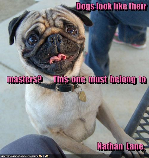 Dogs look like their     masters?       This  one  must  belong  to   Nathan  Lane.