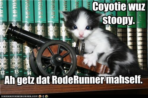 cannon,caption,captioned,cat,coyote,do it yourself,kitten,looney tunes,roadrunner,solution,wile e coyote