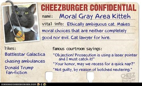 Cheezburger Confidential Moral Grey Area Kitteh did not have fave button so I copied it to my hard drive and uploaded it as an LOL for anyone who wants it in their collection.