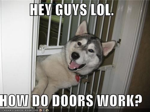 HEY GUYS LOL.  HOW DO DOORS WORK?