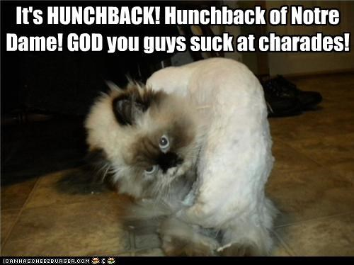 acting,captioned,cat,charades,hunchback,impersonating,persian,quote,The Hunchback of Notre-Dame,upset,victor hugo