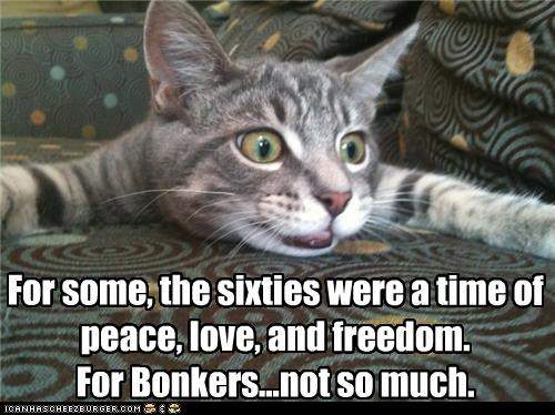For some, the sixties were a time of peace, love, and freedom. For Bonkers...not so much.