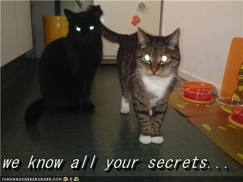 we know all your secrets...
