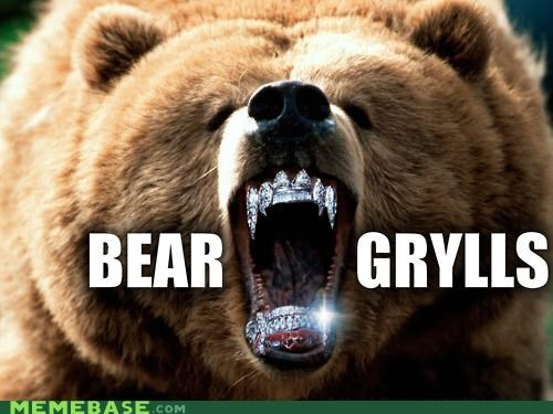 animemes,bear grylls,bears,grills,Memes,pee,puns