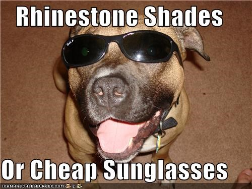 Rhinestone Shades  Or Cheap Sunglasses