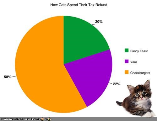 How Kittehs Spend Their Tax Refund