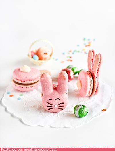 bunnies,ears,easter,epicute,macarons,pink,tails