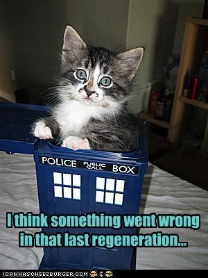 accident,best of the week,caption,captioned,cat,doctor who,Hall of Fame,I Can Has Cheezburger,kitten,last,oops,regeneration,something,tardis,went,wrong