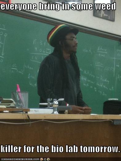 bio lab,buds,killer,Rasta Prof,weed