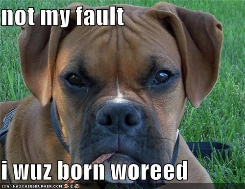 not my fault  i wuz born woreed