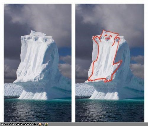 ceiling cat,iceberg,look alike,snow