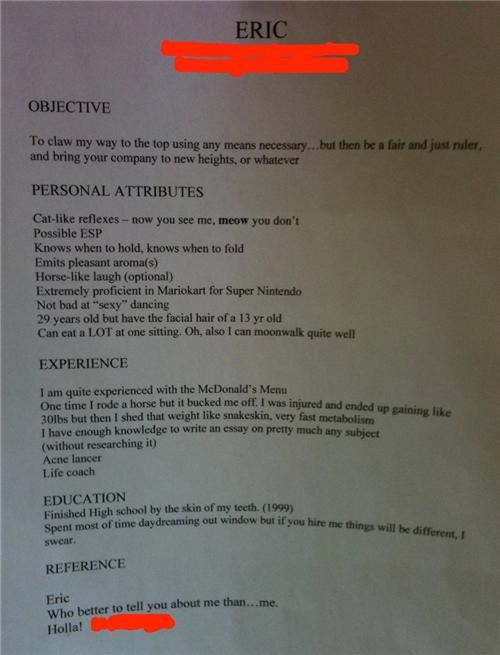 Impressive Resume of the Day
