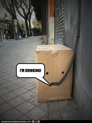 I'M DRINKING!
