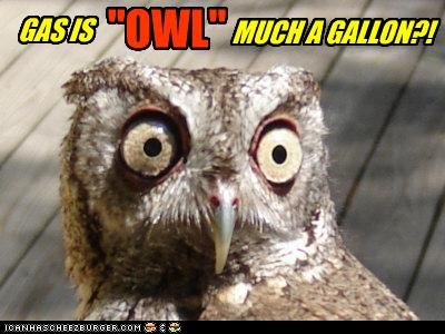 """Gas is """"Owl"""" Much A Gallon?"""