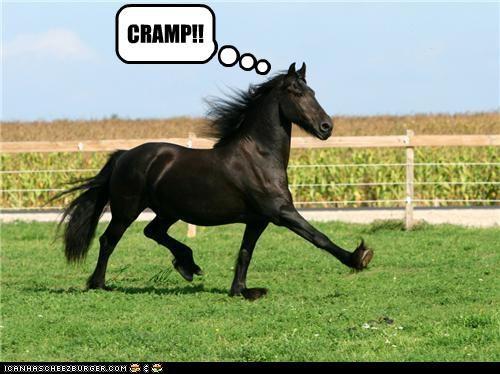 CRAMP!!