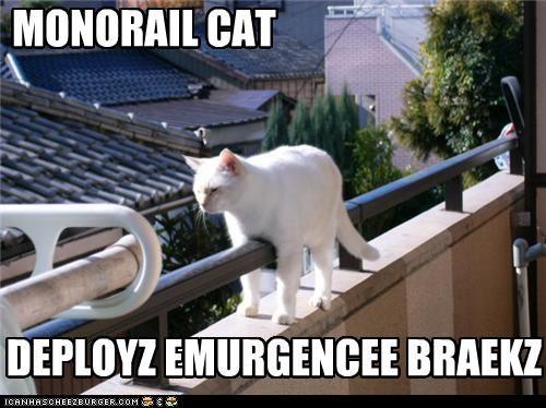 monorail cat wallpaper
