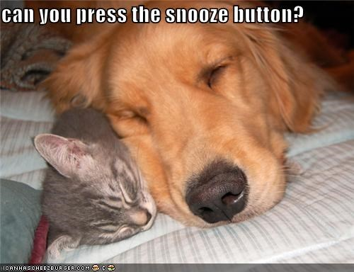 can you press the snooze button?